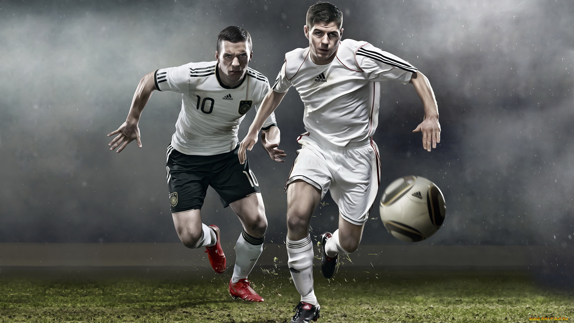 стайная птица, фото обои для рабочего стола футбол неприятный